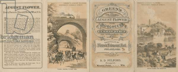 Green's August Flower and Boschee's German Syrup. Portfolio of views in Fairmount Park, Philadelphia, c.1876 (stone tinted litho) (see also 463235)