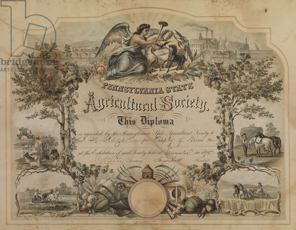 Pennsylvania State Agricultural Society certificate, printed by Herline & Co., c.1871 (tinted & hand-coloured litho)