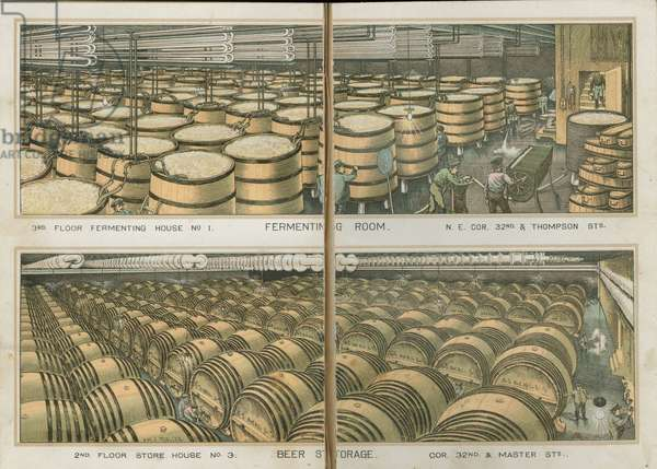 Fermenting Room and Beer Storage, The Bergner & Engel Brewing Co., Philadelphia, c.1890 (chromolithograph)
