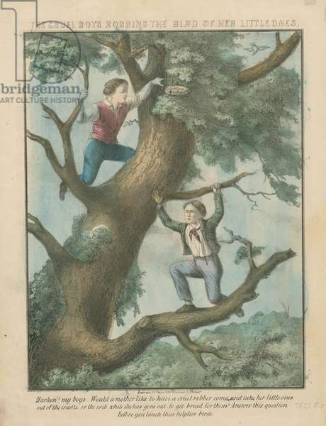 The cruel boys robbing the bird of her little ones, c.1850 (hand-coloured litho)