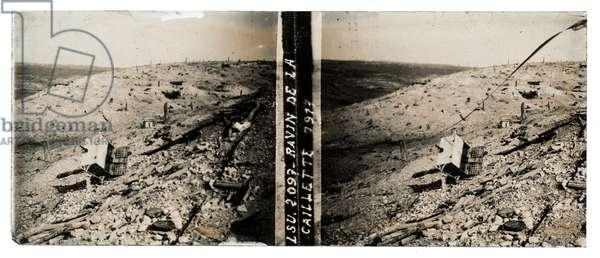 Ravin de la Caillette, 1917 (b/w photo)