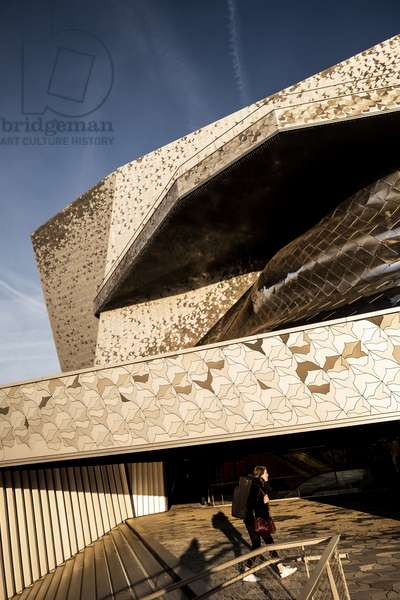 The Philarmony de Paris (photo)