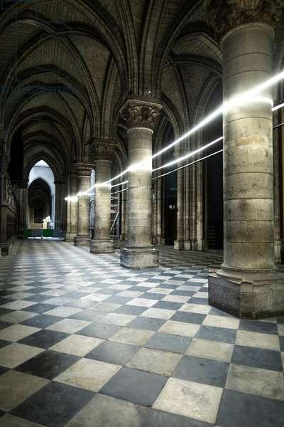 Chantier de la cathedrale Notre-Dame