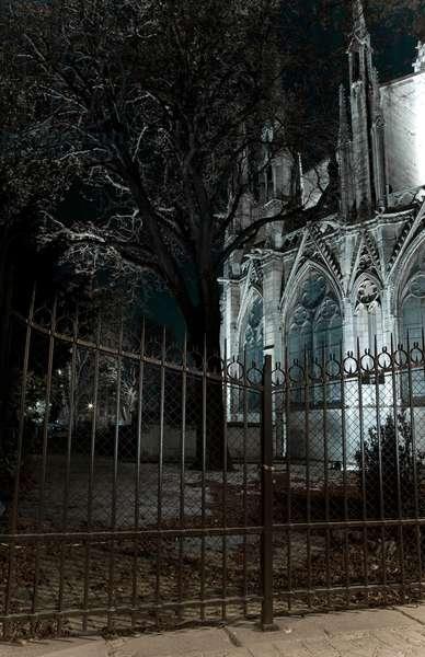 Cathedrale Notre Dame de Paris 2008