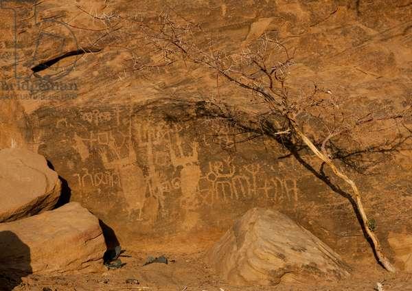 Rock Carving in Abar Himma, near Najran, Saudi Arabia (photo)