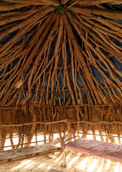 Tihama Coast Traditional House, Saudi Arabia (photo)