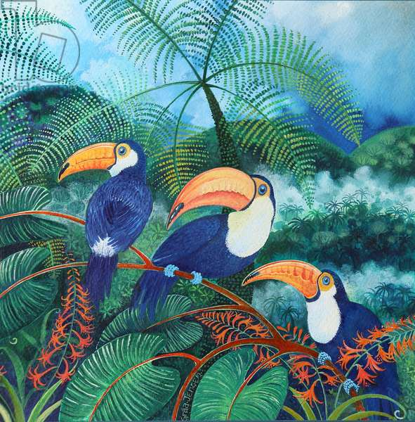 Toucans, 2012(acrylics on paper)