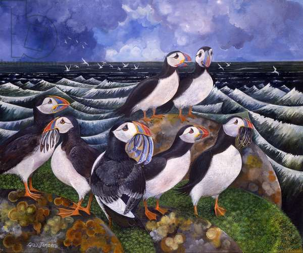 Puffins, 2000 (acrylic and ink)