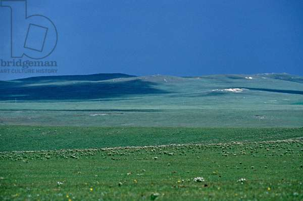 Inner Mongolia grasslands, China, 1985 (photo)