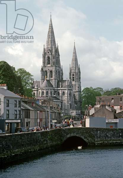 St Finbarr Cathedral on the banks of the River Lee, Cork city, referred to in James Joyce 'A Portrait of the Artist as a Young Man', Ireland (photo)