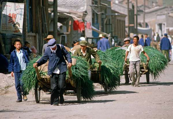 Onions being transported on carts in Inner Mongolia, China, 1985 (photo)
