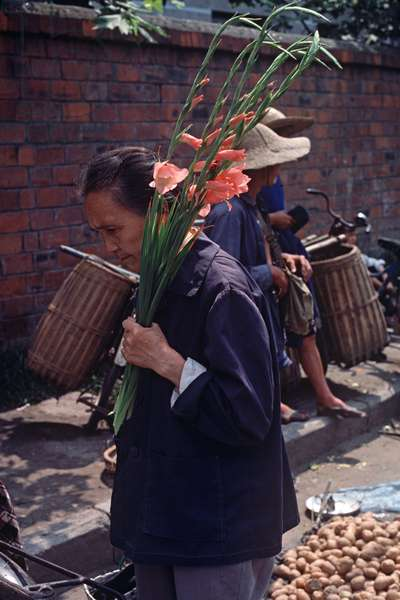 Chinese woman with bunch of gladiolis, Chengdu market, Sichuan Province, China (photo)