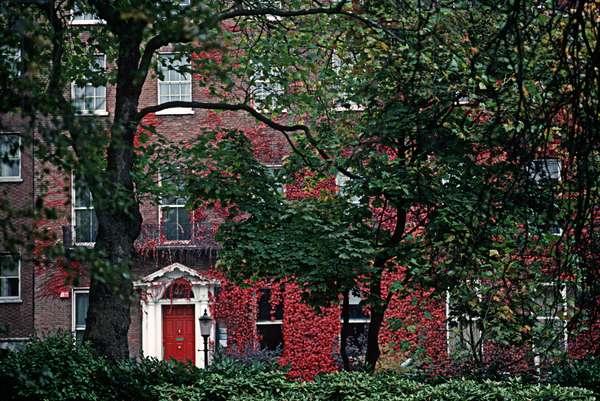Georgian houses, St Stephen's Green, referred to in James Joyce 'Ulyssses', Dublin, Ireland (photo)