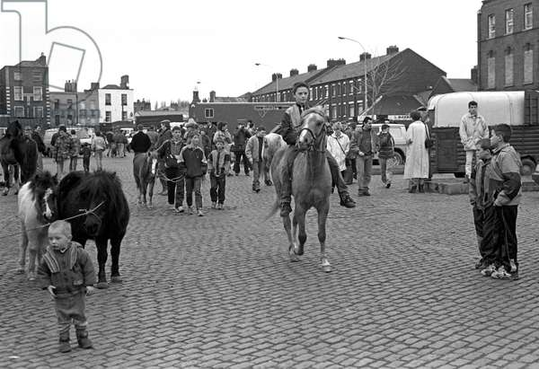 Horse for sale in Smithfield horse market, Dublin, Ireland, 90s