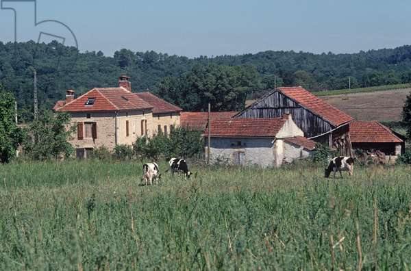 Small hamlet in Lot countryside, Lot Department, South West France, France (photo)