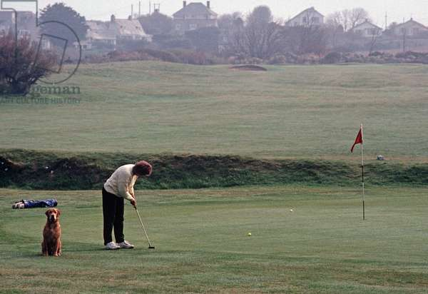 Playing golf at St Enedoc golf course, North Cornwall, England, UK (photo)