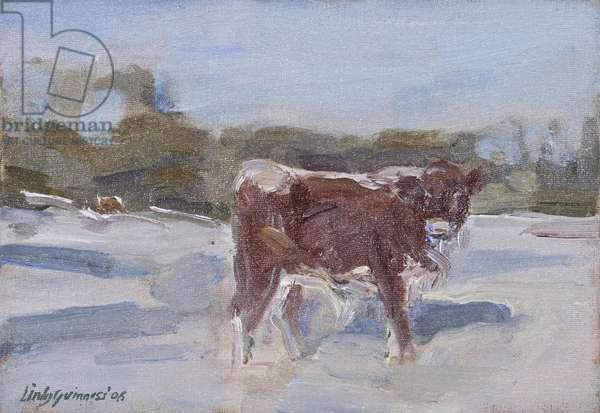Mollie Calf in the Snow, (oil on board)