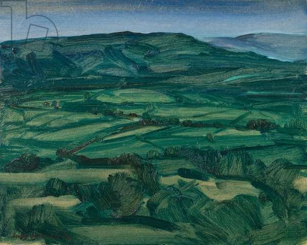 Craigantlet Hills from Helen's Tower, (oil on board)
