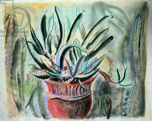 Succulent in Lustre Ware Pot, 1959 (pastel)