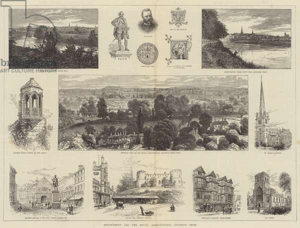 Shrewsbury and the Royal Agricultural Society's Show (engraving)