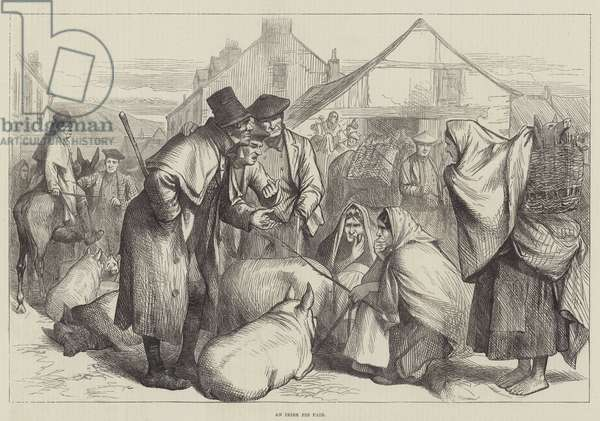 An Irish Pig Fair (engraving)
