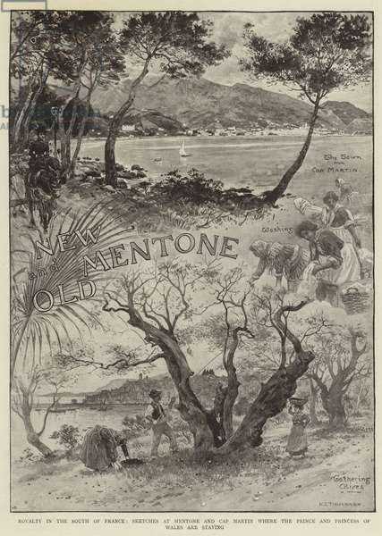 Royalty in South of France, Sketches at Mentone and Cap Martin where the Prince and Princess of Wales are staying (engraving)