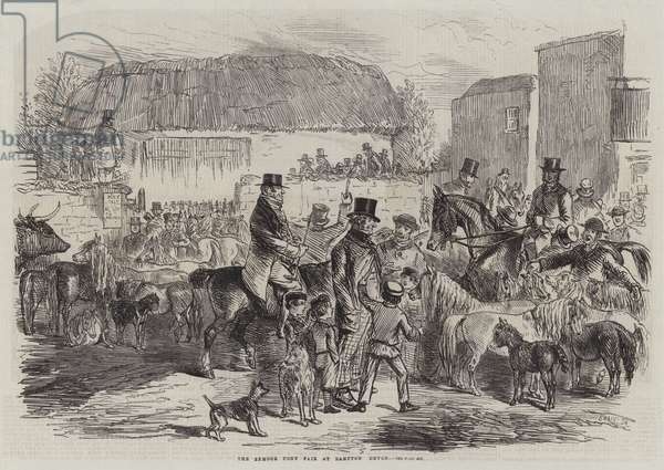 The Exmoor Pony Fair at Bampton Devon (engraving)