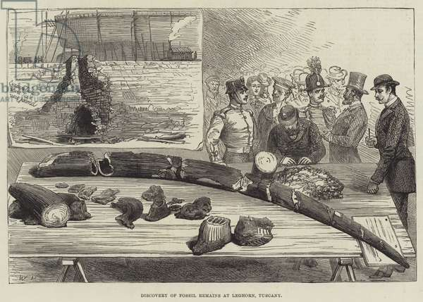 Discovery of Fossil Remains at Leghorn, Tuscany (engraving)