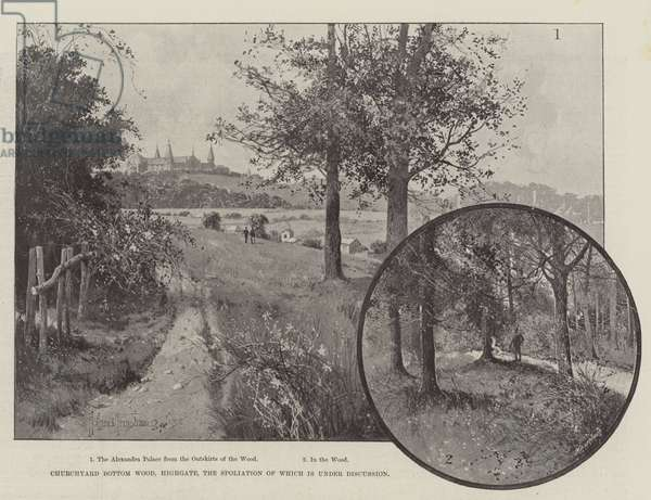 Churchyard Bottom Wood, Highgate, the Spoliation of which is under Discussion (litho)