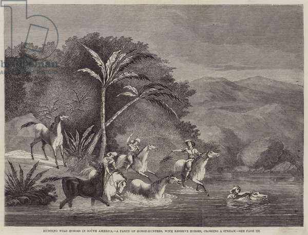 Hunting Wild Horses in South America, a Party of Horse-Hunters, with Reserve Horses, crossing a Stream (engraving)
