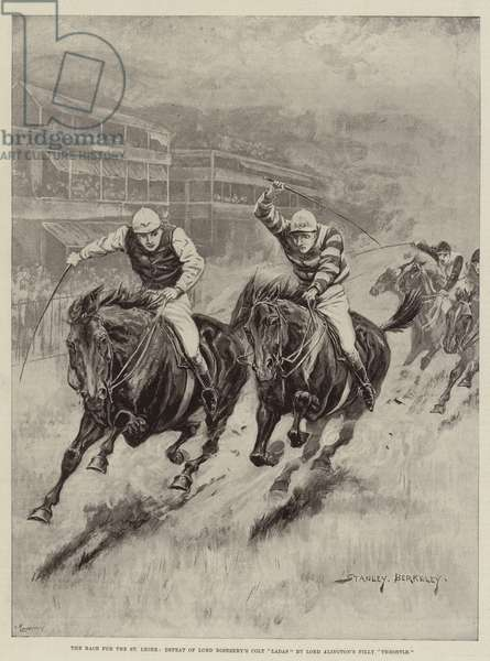 "The Race for the St Leger, Defeat of Lord Rosebery's Colt ""Ladas"" by Lord Alington's Filly ""Throstle"" (litho)"