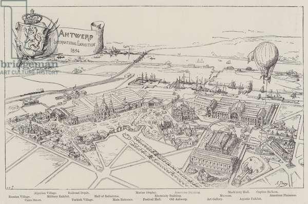 Antwerp International Exposition, 1894 (engraving)