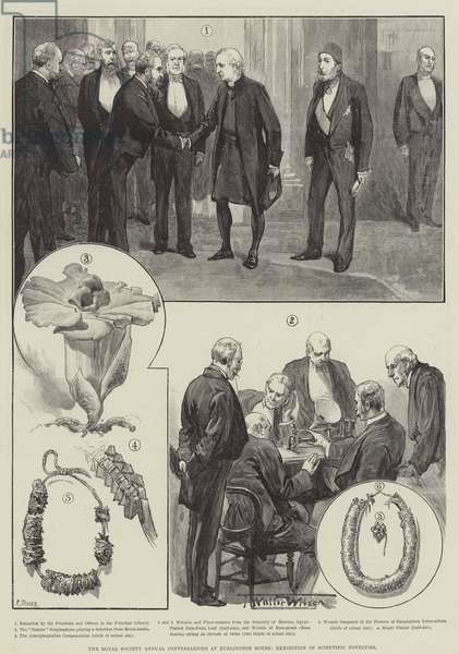 The Royal Society Annual Conversazione at Burlington House, Exhibition of Scientific Novelties (engraving)