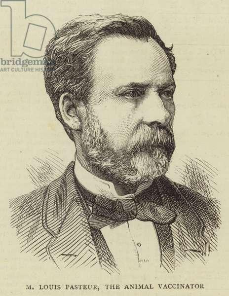 M Louis Pasteur, the Animal Vaccinator (engraving)