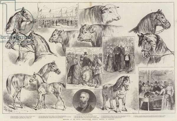 Sketches at the Royal Agricultural Society's Meeting at Norwich (engraving)