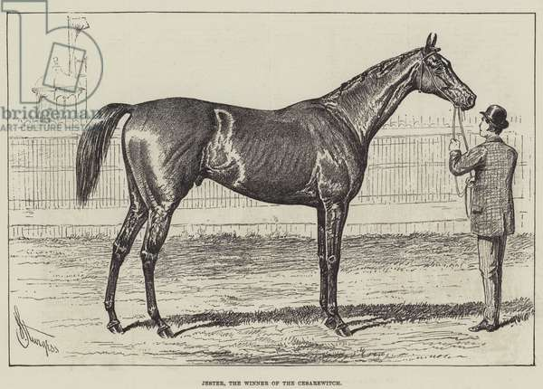 Jester, the Winner of the Cesarewitch (litho)