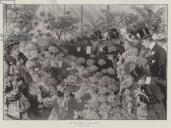 At the Temple Flower Show (engraving)