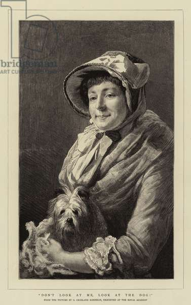 Don't Look at Me, Look at the Dog! (engraving)