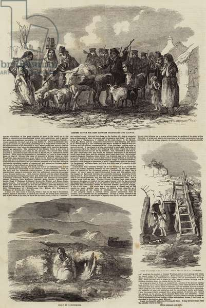 Conditions of Ireland (engraving)