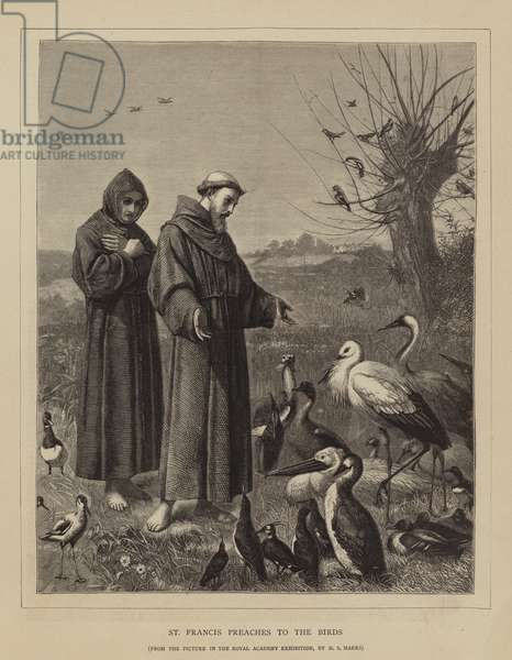 St Francis preaches to the Birds (engraving)
