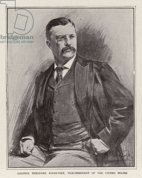 Colonel Theodore Roosevelt, Vice-President of the United States (litho)