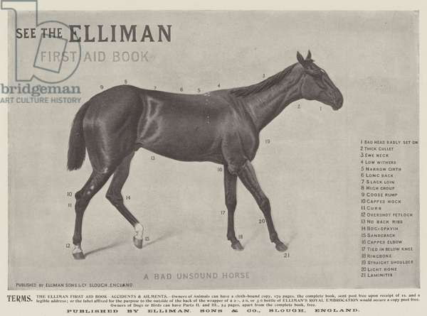 Advertisement, Elliman, Sons and Company (engraving)