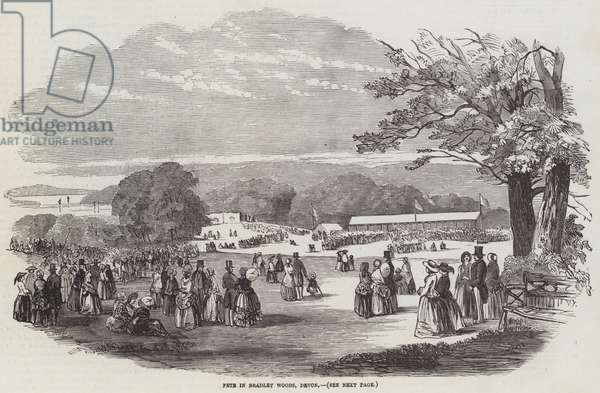 Fete in Bradley Woods, Devon (engraving)