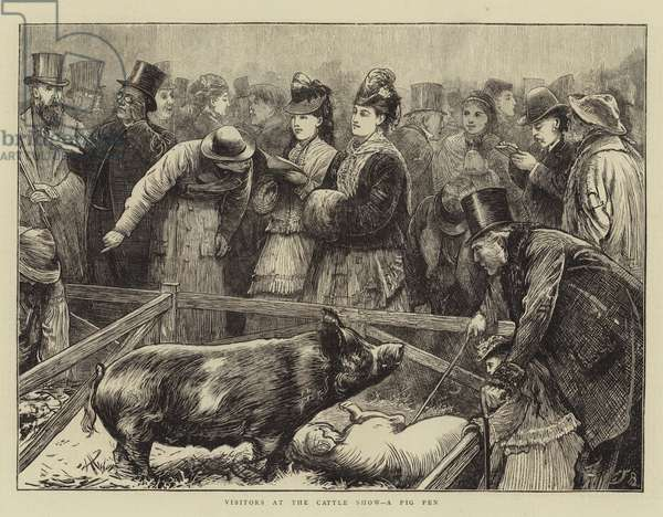 Visitors at the Cattle Show, a Pig Pen (engraving)