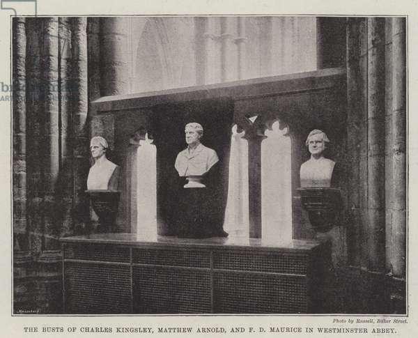 The Busts of Charles Kingsley, Matthew Arnold, and F D Maurice in Westminster Abbey (b/w photo)
