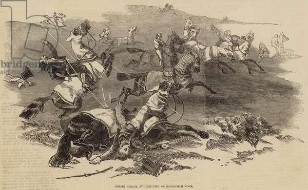 Horses struck by Lightning on Middleham Moor (engraving)