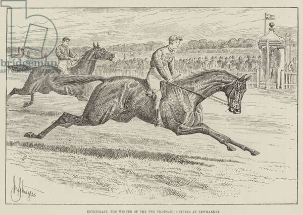 Enthusiast, the Winner of the Two Thousand Guineas at Newmarket (engraving)