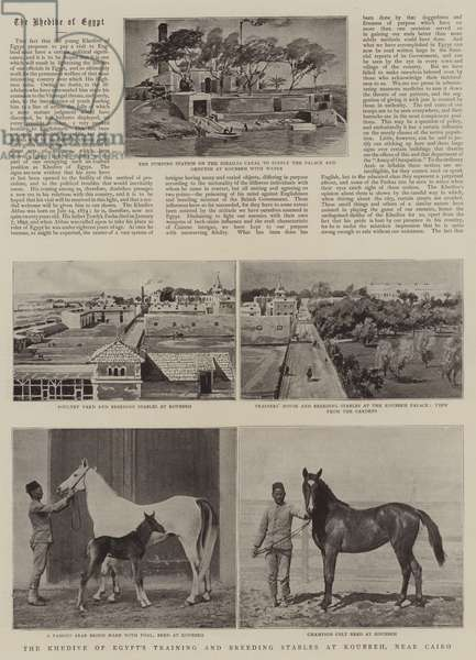 The Khedive of Egypt's Training and Breeding Stables at Koubbeh, near Cairo (litho)