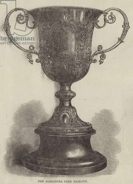 The Alexandra Park Race-Cup (engraving)