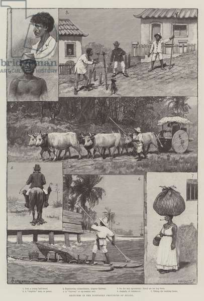 Sketches in the Northern Provinces of Brazil (engraving)